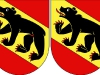 001_Unterschied_Flagge_Bern_NewBern